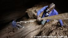 ARCHIV 2015 *** epa05536634 (FILE) A file image dated 25 May 2015 shows illegal Zimbabwean gold miners, Rooi Mpofu (R) and Sherphard Sibanda (L) climbing down an old rope as they enter a disused commercial gold mine to start another shift of illegal gold mining near Soweto, Johannesburg, South Africa. Reports on 12 September 2016 confirm an unknown number of miners are trapped underground at a shaft near this shaft after a fire broke out. The miners called 'Zama Zama's', are illegal miners who use existing air vents in disused commercial gold mines to mine for gold. Many are illegal immigrants from Zimbabwe and Lesotho. EPA/KIM LUDBROOK *** Local Caption *** 51959941 +++(c) dpa - Bildfunk+++ |