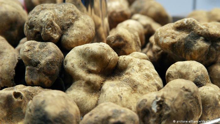 White truffles in a Berlin restaurant