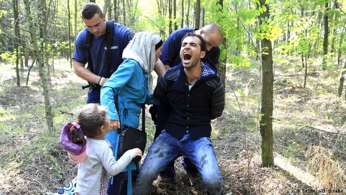 Hungarian policemen detain a Syrian migrant family after they entered Hungary at the border with Serbia, near Roszke, August 28, 2015 (Reuters/B. Szabo)