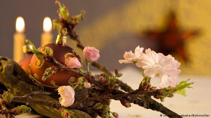 Cherry tree buds with Christmas bulb and candles (Imago/imagebroker/Bahnmüller)