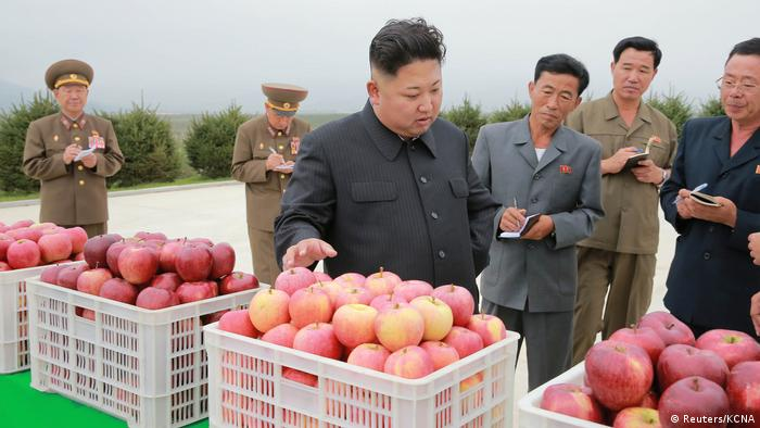 Kim Jong-Un visits domestic fruit farm