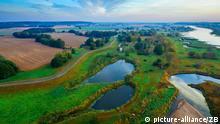 Drohnenbild Morgenstimmung an der Oder