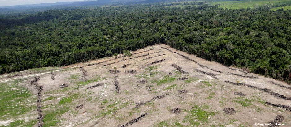 Desmatamento na Amazônia teve alta acima de 20% em dois anos seguidos, 2015 e 2016