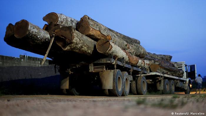 Caminhão com madeira ilegal em Novo Progresso