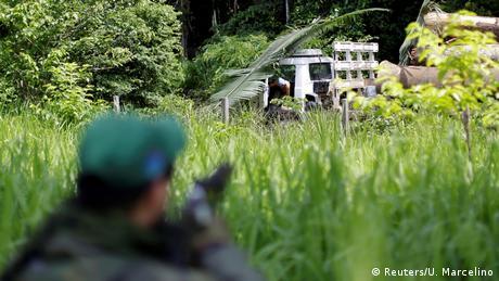 Brazil fights illegal logging (Reuters/U. Marcelino)
