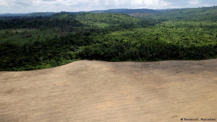 Aerial view of cleared land in Novo Progresso, Brazil
