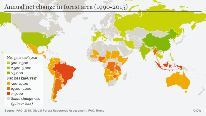Annual net change in forest area