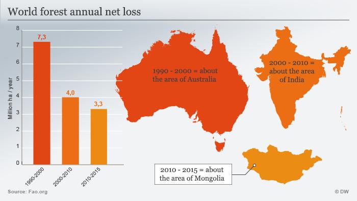 Infografik weltweite Abholzung englisch