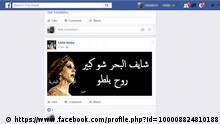 Screenshot Facebook Reaktionen in Libanon zu Hezbollah und Fairouz