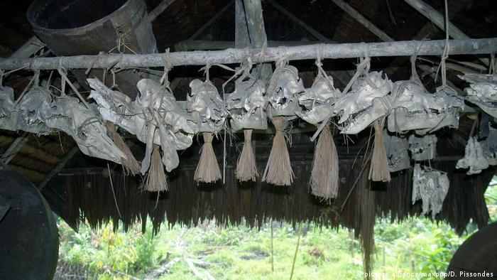 Mentawai Inseln Volk Ureinwohner Tierschädel (picture-alliance/maxppp/D. Pissondes)