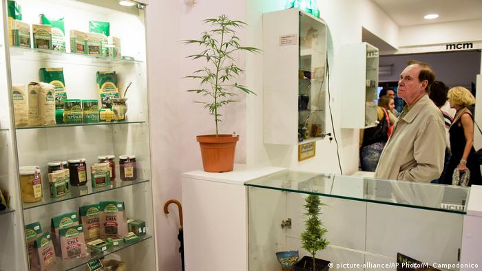 Uruguay Cannabis Museum in Montevideo (picture-alliance/AP Photo/M. Campodonico)