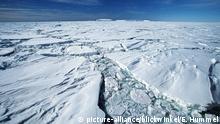Antarktis Impressionen