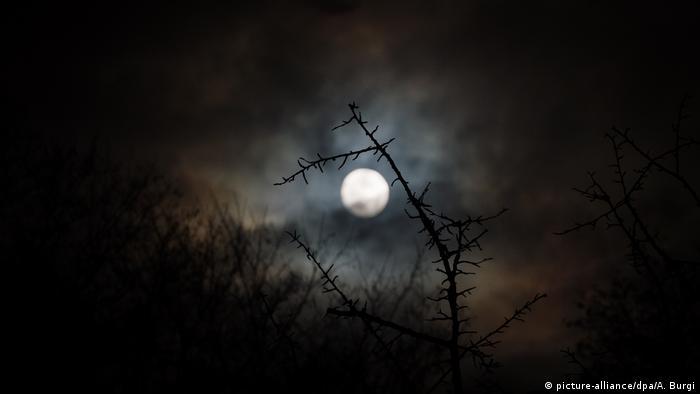 Mond über Dresden (picture-alliance/dpa/A. Burgi)