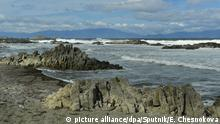 2935790 09/11/2016 The Cape Stolbchaty on the coast of the Sea of Okhotsk in the west of the Kunashir Island, Greater Kuril Ridge. Ekaterina Chesnokova/Sputnik |