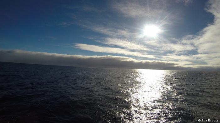Forschungsschiff Polarstern (Eva Brodte)