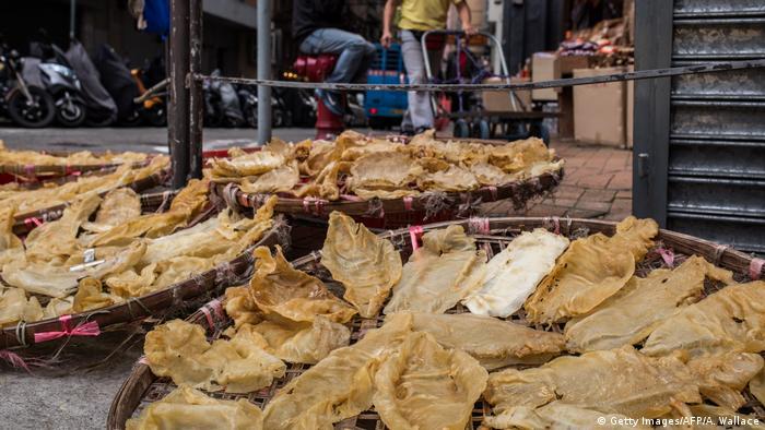Mercado de pescado en Hong Kong.