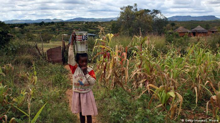 A young girl carries an object on her head in a small farm (Getty Images/J. Moore)