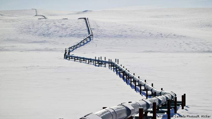 Trans Alaska Öl Pipeline (picture-alliance/All Canada Photos/R. Hicker)