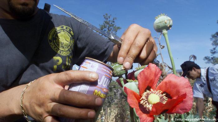 Estados Unidos está experimentando una de las mayores emergencias de su historia por la entrada al país de drogas duras, advirtió el experto en narcóticos del Departamento de Estado, William Brownfield. Este enfatizó, asimismo, que se trata de tal vez la peor crisis de heroína y opiáceos desde los años 60. (3.03.2017)