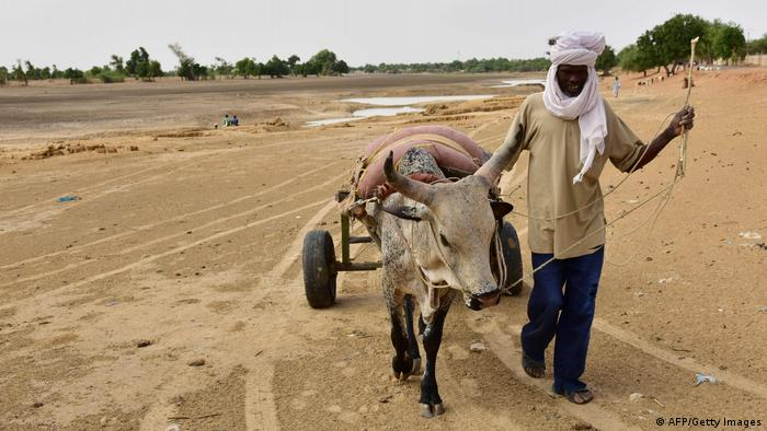 Nigeria agriculture (AFP/Getty Images)