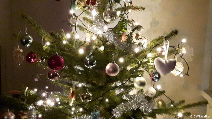 …το χριστουγεννιάτικο δέντρο σας; Κανείς δεν μπορεί να φανταστεί τα Χριστούγεννα χωρίς το στολισμένο δέντρο. Το ερώτημα είναι: αληθινό ή ψεύτικο δέντρο; Από περιβαλλοντική άποψη τίποτα από τα δύο. Τα πλαστικά δέντρα χρειάζονται πετρέλαιο και δημιουργούν σκουπίδια ενώ τα αληθινά κόβονται. Οι εναλλακτικές λύσεις θα ήταν: δέντρα προς ενοικίαση, μια κατασκευή ή ένα δέντρο στη γλάστρα.