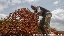 Elfenbeinküste Kakao-Produktion