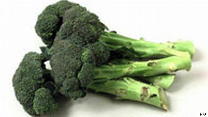 broccoli essay