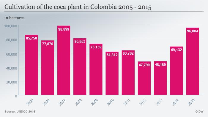 Infografik Anbau von Kokapflanzen in Kolumbien englisch