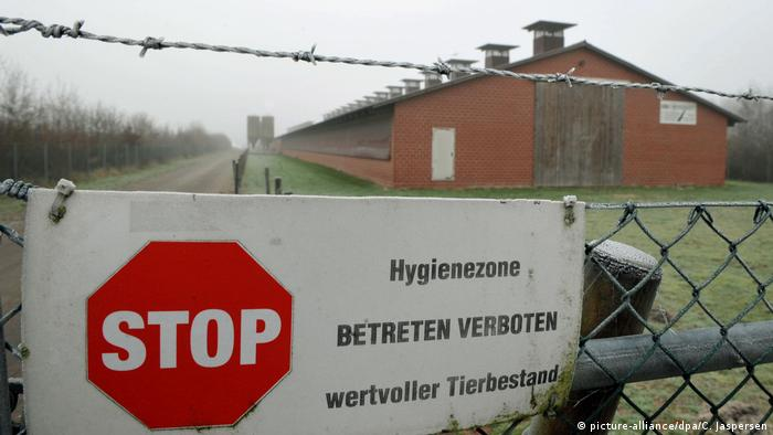 Sign in German forbidding entry into hygiene zone due to avian flu (picture-alliance/dpa/C. Jaspersen)
