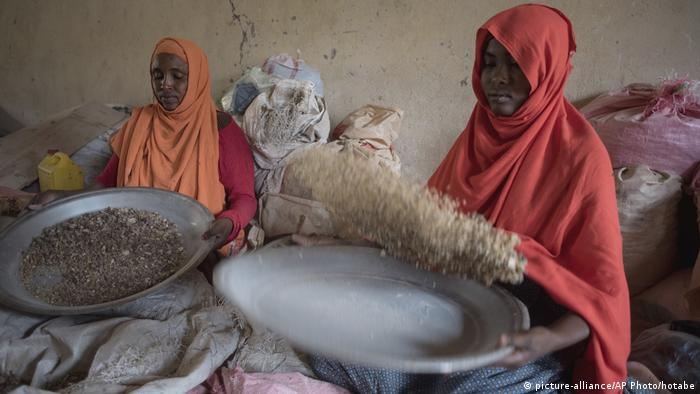 Two women sorting frankincense gum in Burao Somaliland