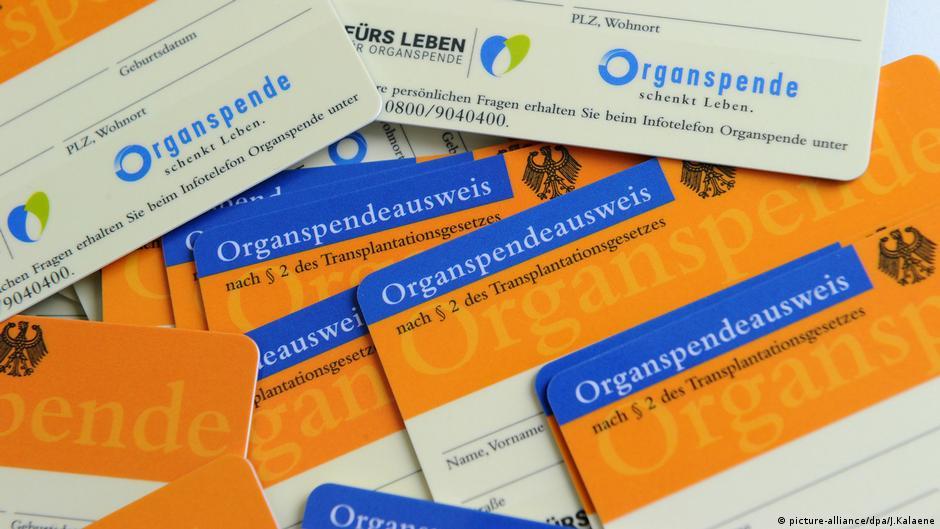 organspendeausweis karte