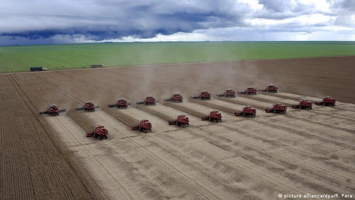 Ernte auf einer Sojafarm in Brasilien