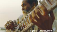 Mann spielt Sitar Musik Instrument