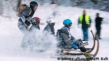 BdT - Traditionelles Hornschlittenrennen