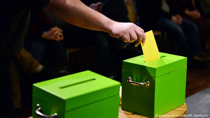 Green party voting boxes