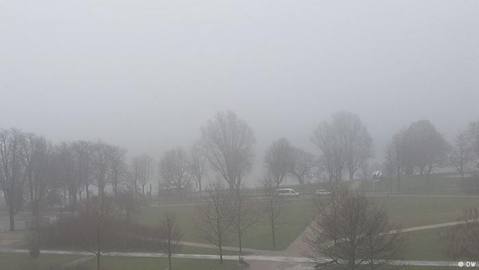 Foggy view of Rhine (DW)