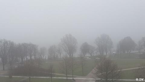 Foggy view of Rhine (DW)