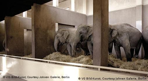 Candida Höfer Zoologische Gärten Hamburg I freies Bildformat