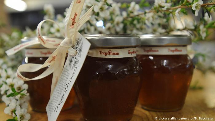 Гибель пчел неизбежно повлечет дефицит меда