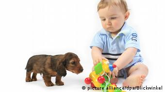 Dachsund and baby (picture alliance/dpa/Blickwinkel)
