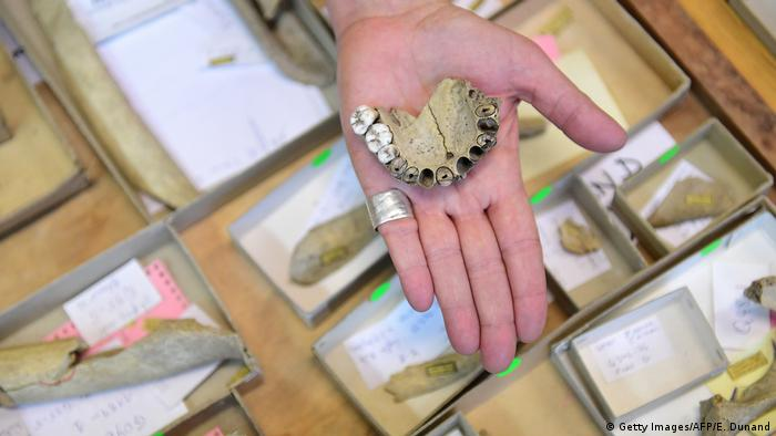 Neanderthal jaws in the archives of the California State University Northridge (Getty Images/AFP/E. Dunand)