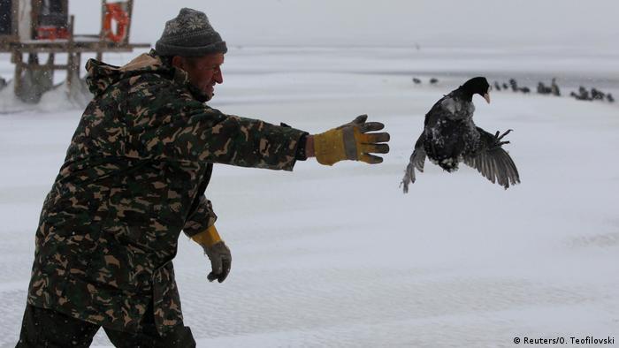 Macedonia, Doiran lake - a man frees a bird frozen to the lake (Reuters/O. Teofilovski)