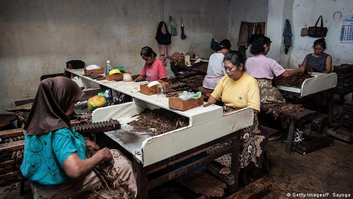 Indonesien Java Zigarrenproduktion (Getty Images/P. Sayoga)