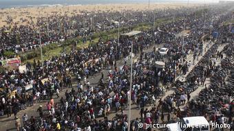Indien Tamil Nadu Proteste gegen Verbot von Jallikattu (picture-alliance/AP Photo)
