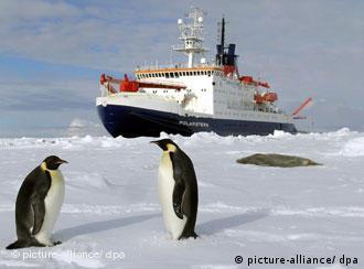 Navio de pesquisa alemão Polarstern busca na Antártida informações sobre mudanças climáticas