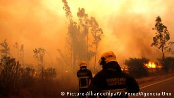 Chilean firefighters battle wildfires