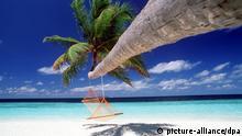 Traumstrände - Malediven