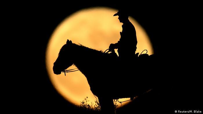 USA Kalifornien Wildpferde berittene Grenzpolizei (Reuters/M. Blake)