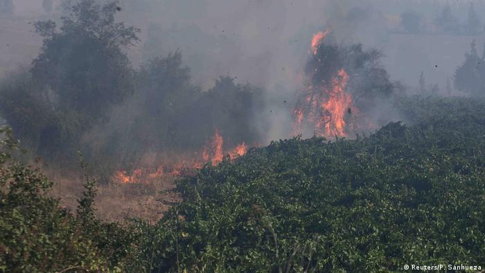 Chile Waldbrände