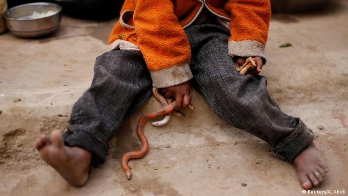 Snake charmers in India (Reuters/A. Abidi)